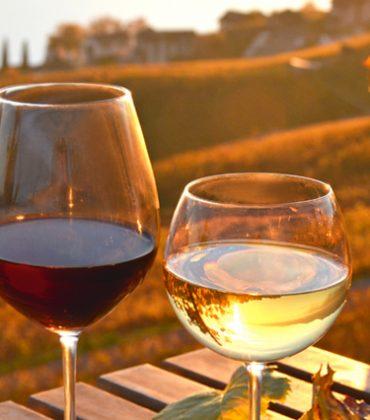 Perché un'azienda vinicola dovrebbe monitorare i social