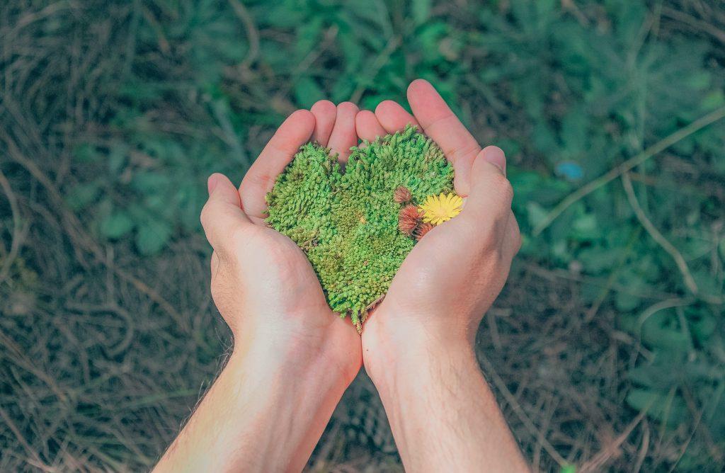 movimento; Giornata Mondiale dell'ambiente; Movimentismo; Pianeta; imprese; impresa;